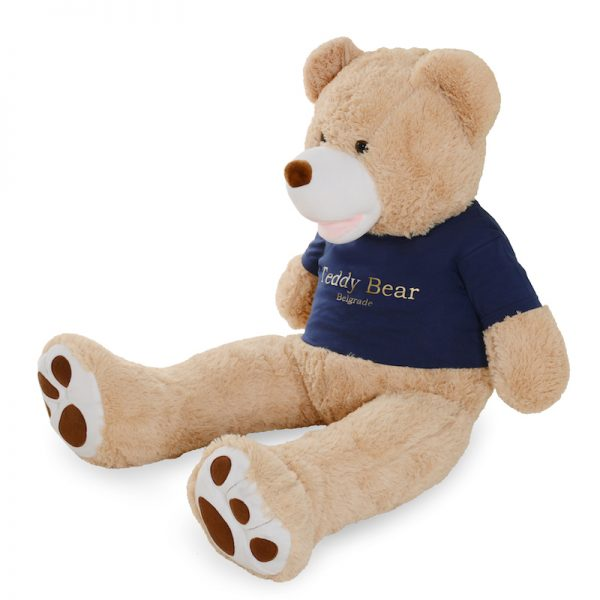The Teddy Bear 1m - Golden Blue