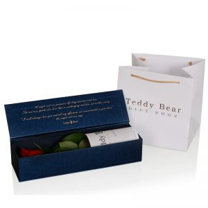 Teddy Bear Navy Blue Red 2