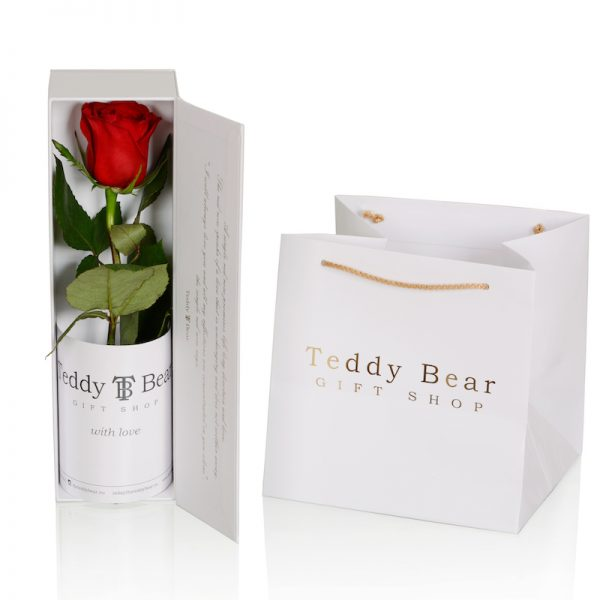 Teddy Bear Single Rose White Red 3