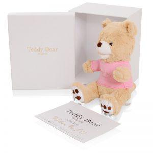 Teddy Bear Pink 30cm