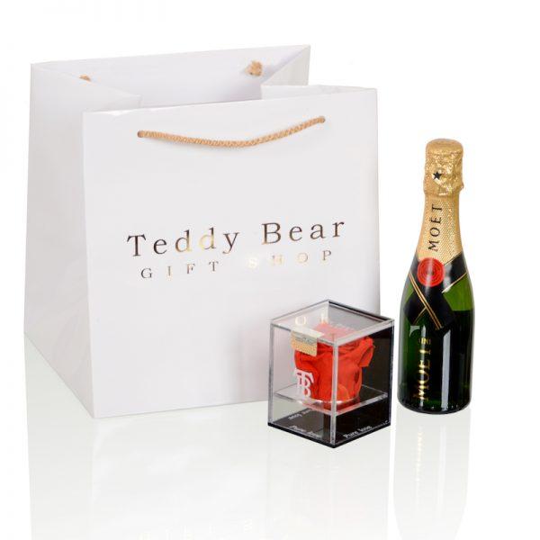 Teddy Bear Pure Love i Moet