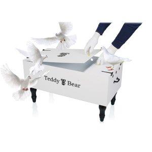 Teddy Bear ® Dove Box